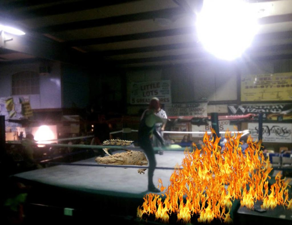 """Moments before flames where put out during Ronny """"The Gator Grappler"""" Davis vs a gator in the main event."""